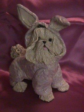 Maltese_Bunny