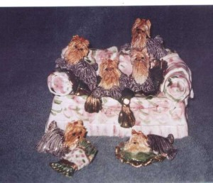 YORKIE COUCH