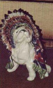 bulldog_indian