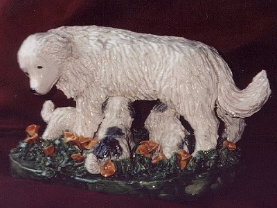 pyr_pups1_flowers